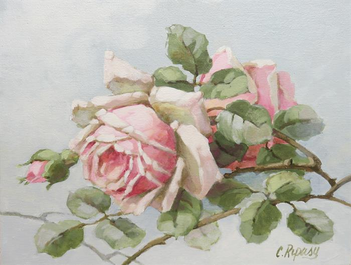 Spring Roses